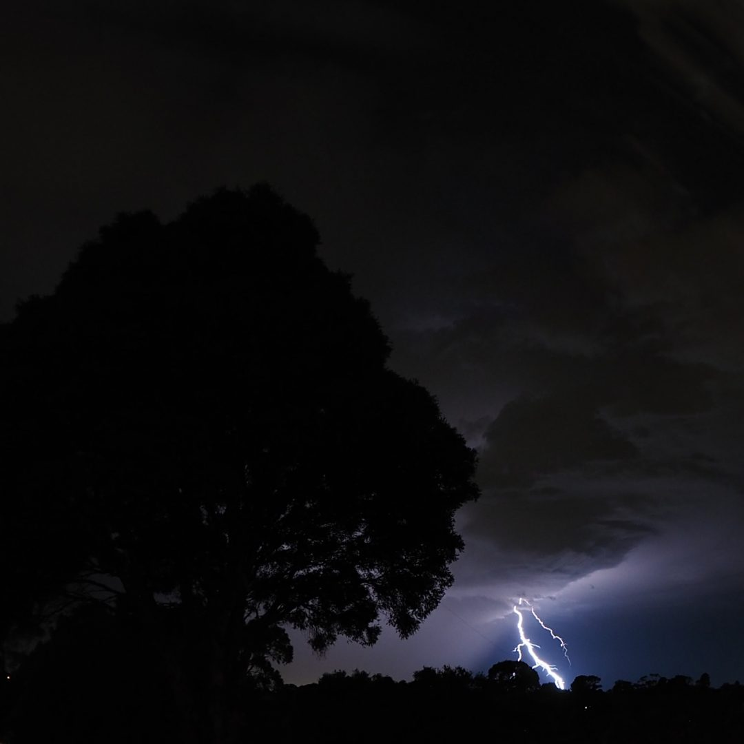 Thunderstorm and tree